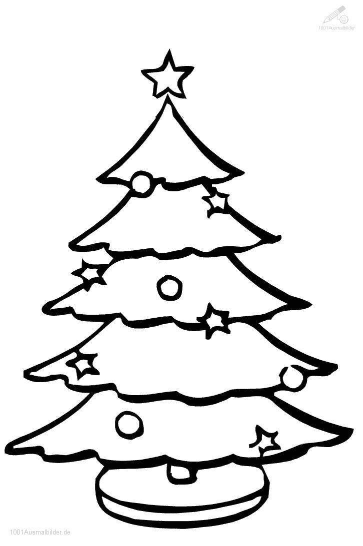 1001 Malvorlagen : Weihnachten >> Weihnachtsbaum verwandt mit Weihnachtsbaum Malvorlage