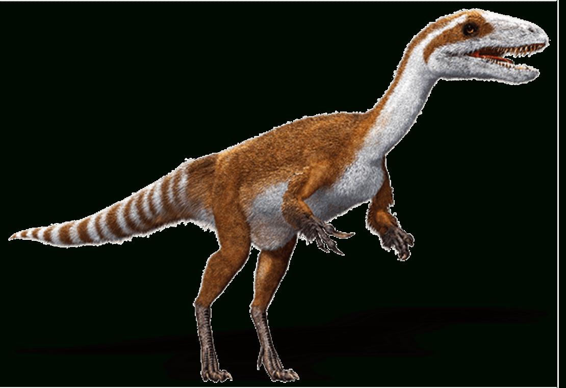 3-Euro-Münzen – Super Saurier Dino-Taler über Bilder Von Dinosauriern