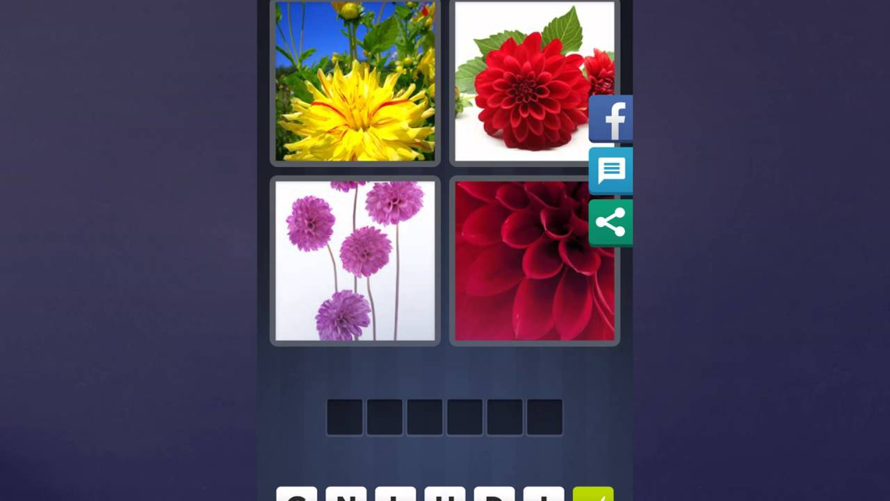 4 Bilder 1 Wort Lösung [Blume, Blume, Blume, Blüte] über Blume Mit 6 Buchstaben
