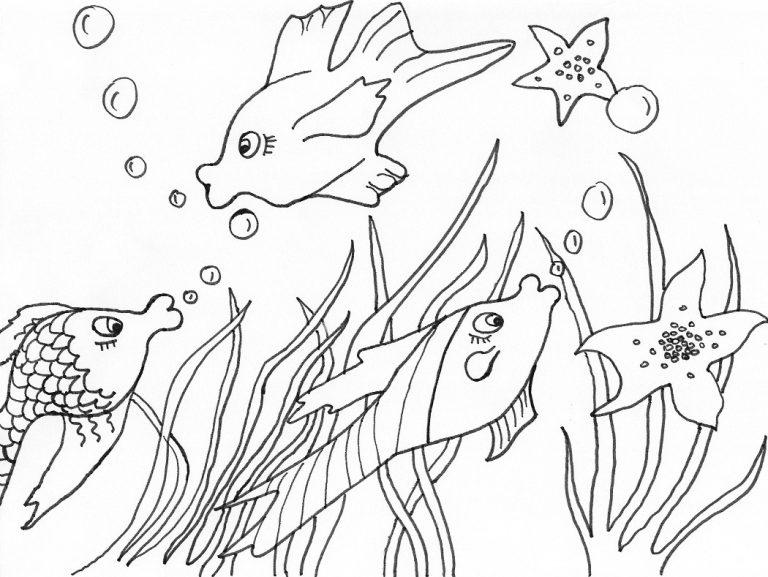 6 beste ausmalbilder fische gratis kostenlose über fische