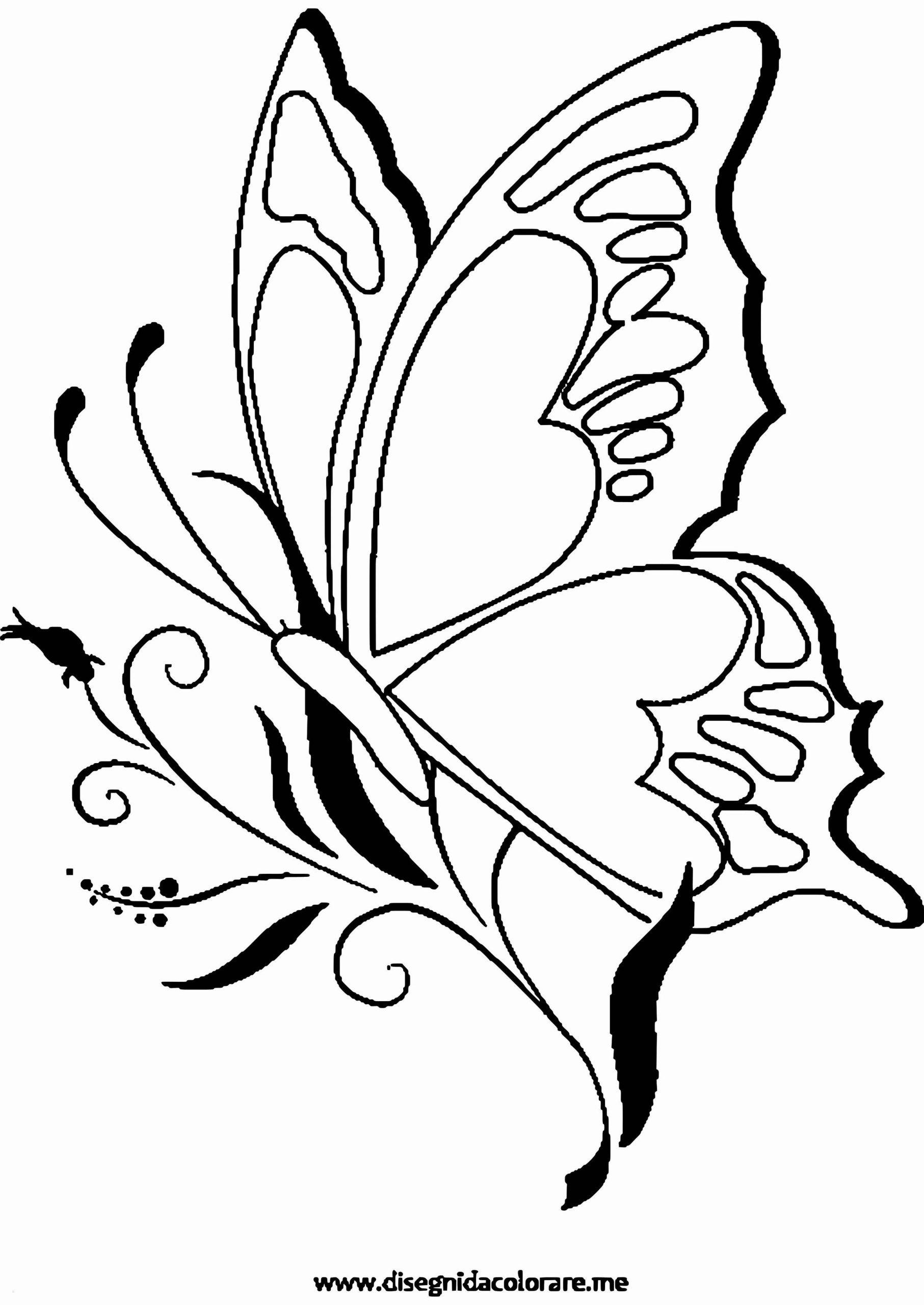 61 Schön Ausmalbilder Schmetterling Kostenlos Ausdrucken für Kostenlose Malvorlage Schmetterling
