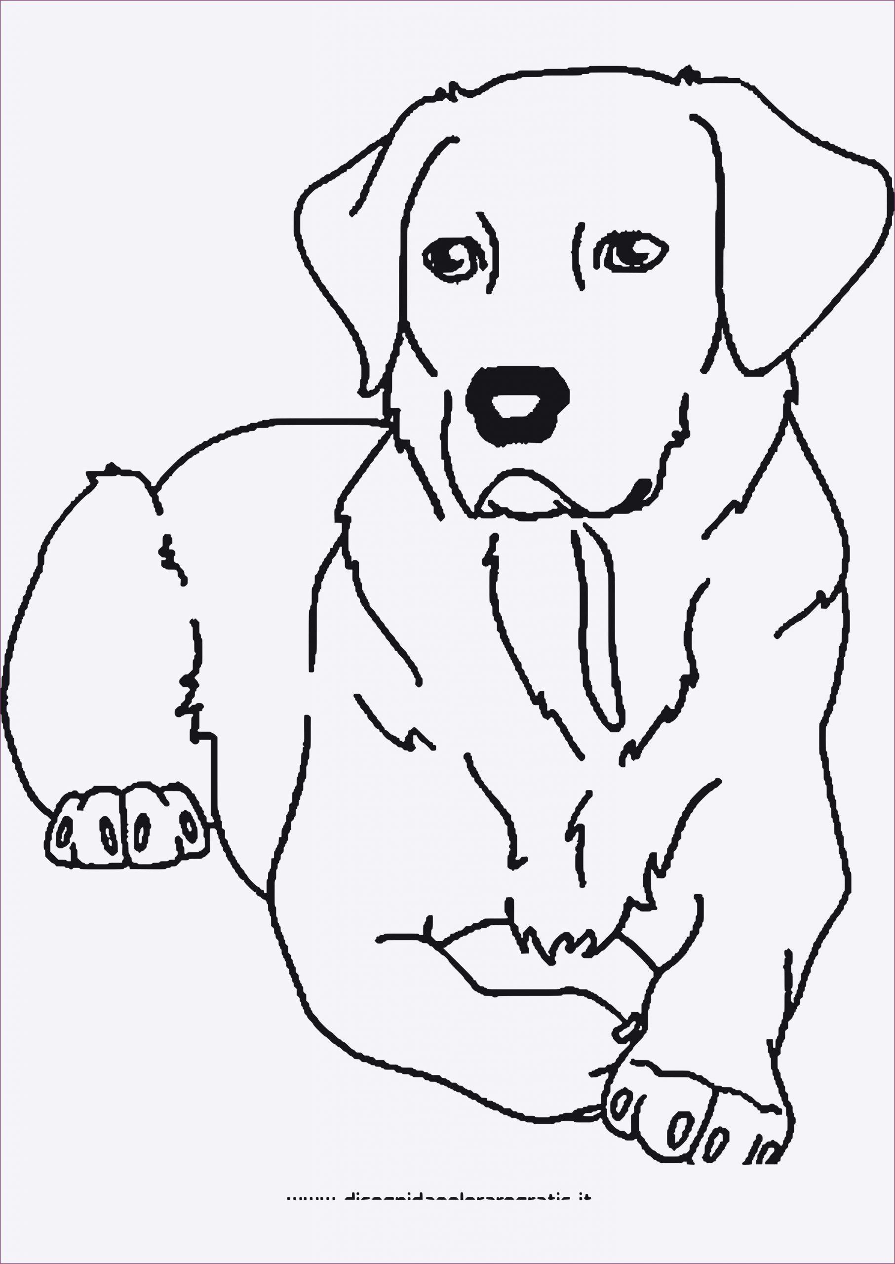 63 Luxus Ausmalbilder Tiere Kostenlos Zum Ausdrucken in Ausmalbilder Haustiere