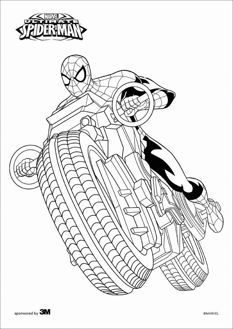 malvorlage spiderman  kinderbilderdownload