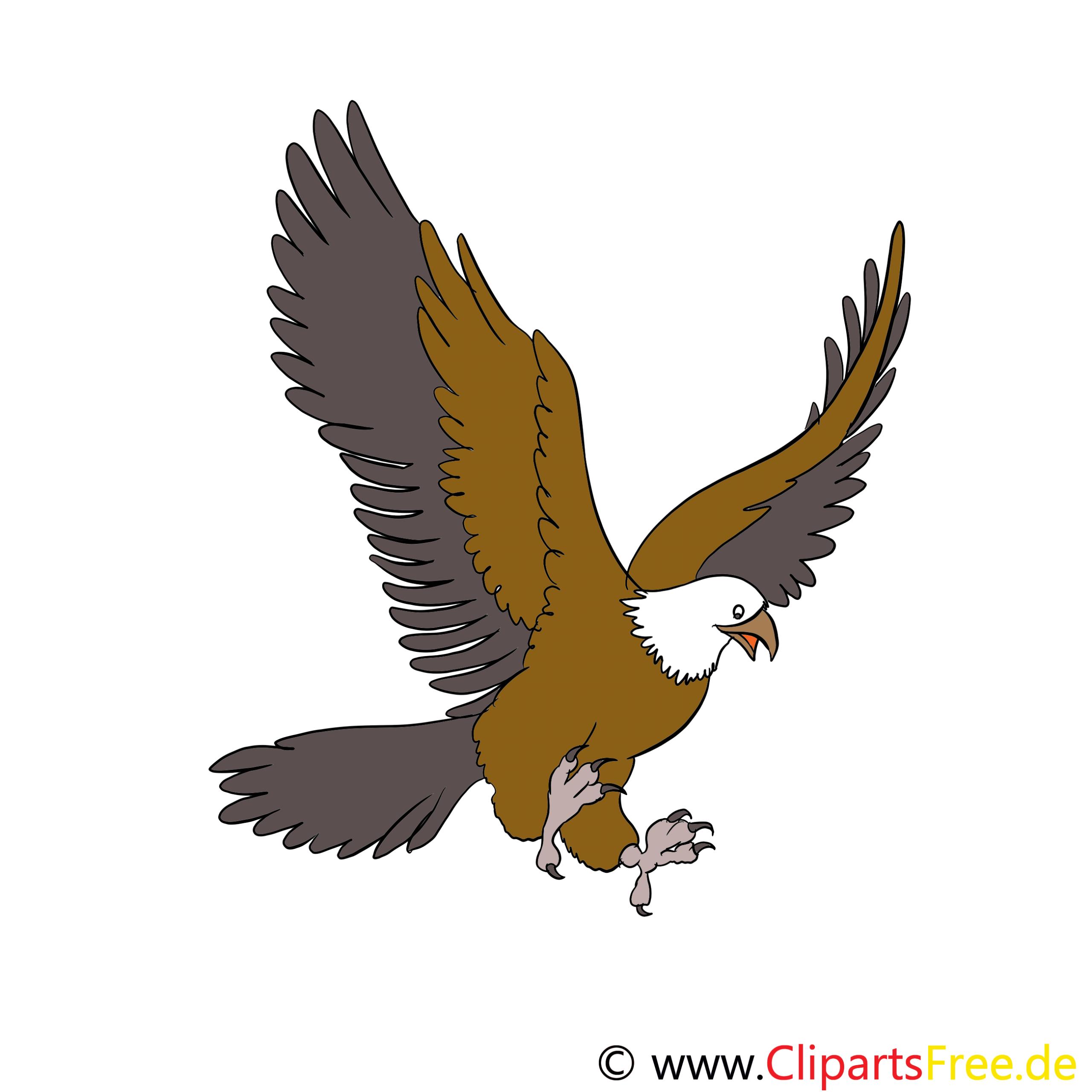 Adler Cartoon, Bild, Illustration, Clip Art verwandt mit Adler Bilder Zum Ausdrucken