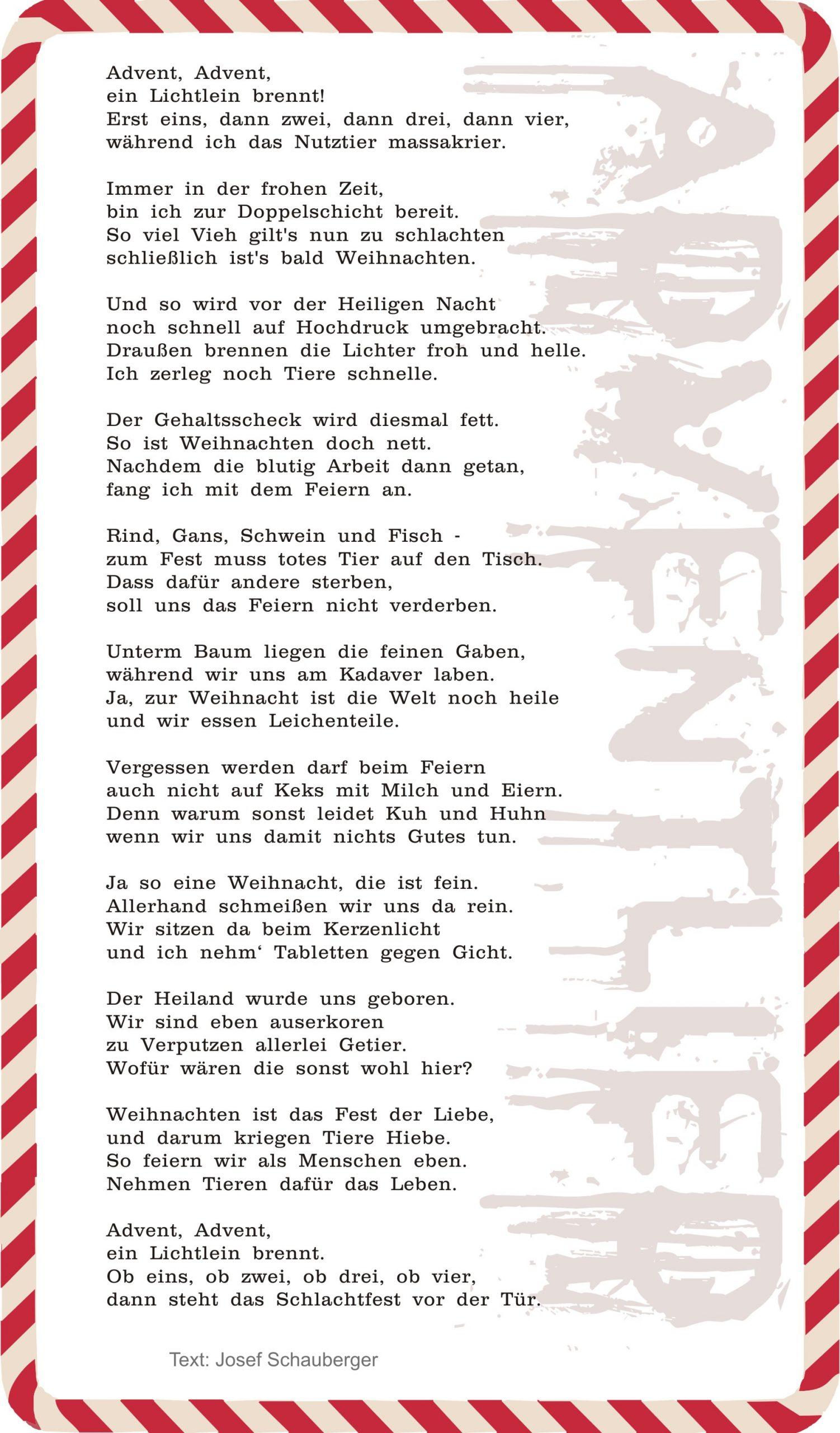 Adventlied: Advent, Advent, Ein Lichtlein Brennt  Pro Vegan bei Advent Advent Ein Türke Brennt
