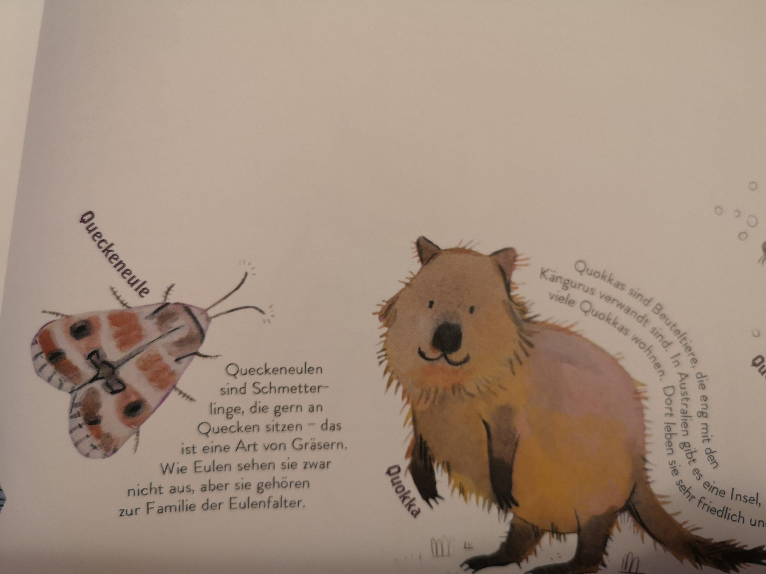 Alle Tiere, Die Ich (Noch Nicht) Kenne - Buchkinderblog ganzes Tier Mit C Als Anfangsbuchstabe