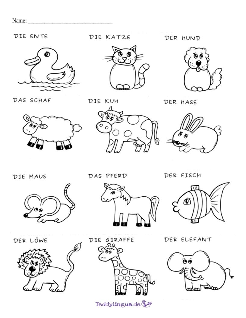 Arbeitsblätter   Teddylingua verwandt mit Übungsblätter Kindergarten Zum Ausdrucken