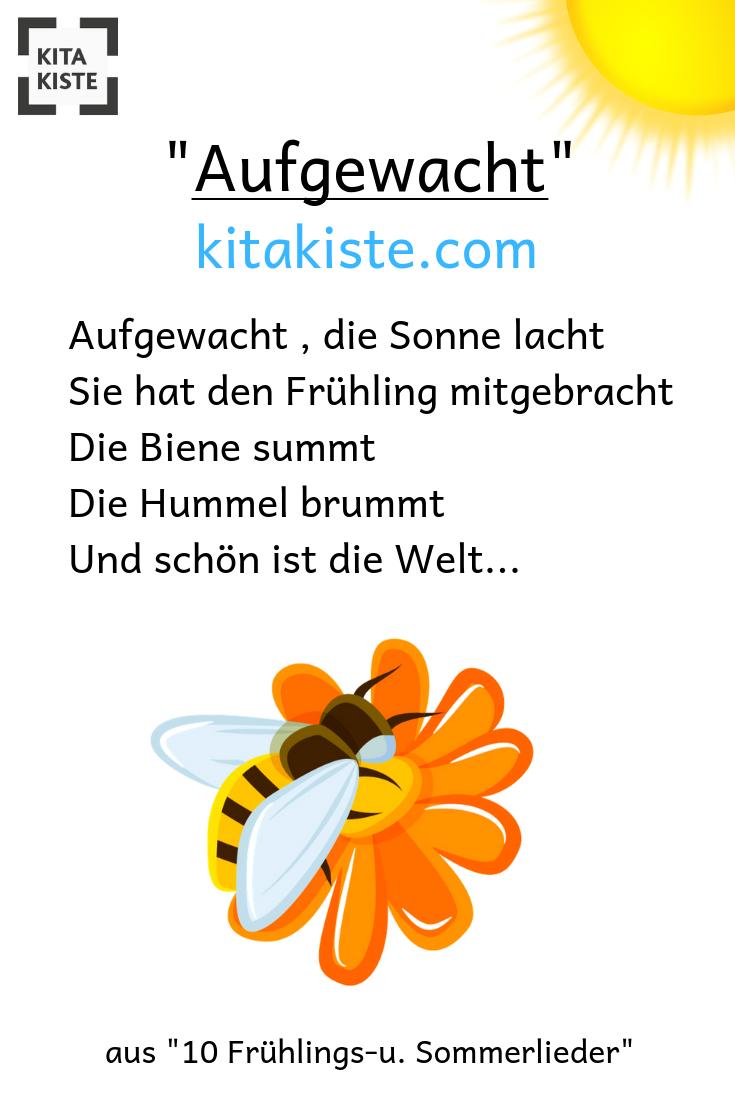 """Aufgewacht"""" - Wudnerschönes Frühlingslied Für #kindergarten bestimmt für Frühlingsgedichte Für Kindergartenkinder"""