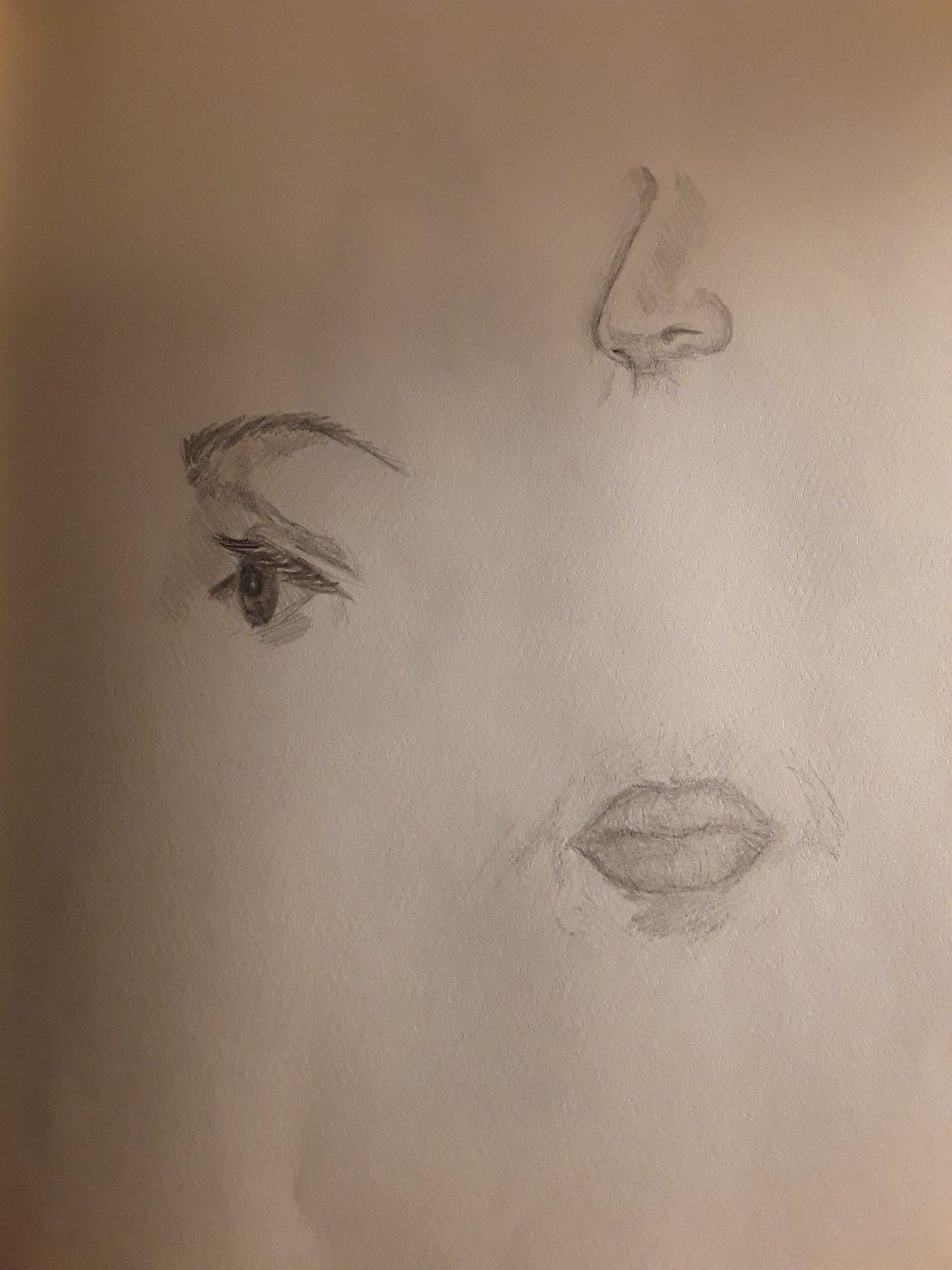 Auge Von Der Seite, Nase 3/4 Ansicht, Mund Von Vorne | Nase in Gesicht Von Der Seite Zeichnen