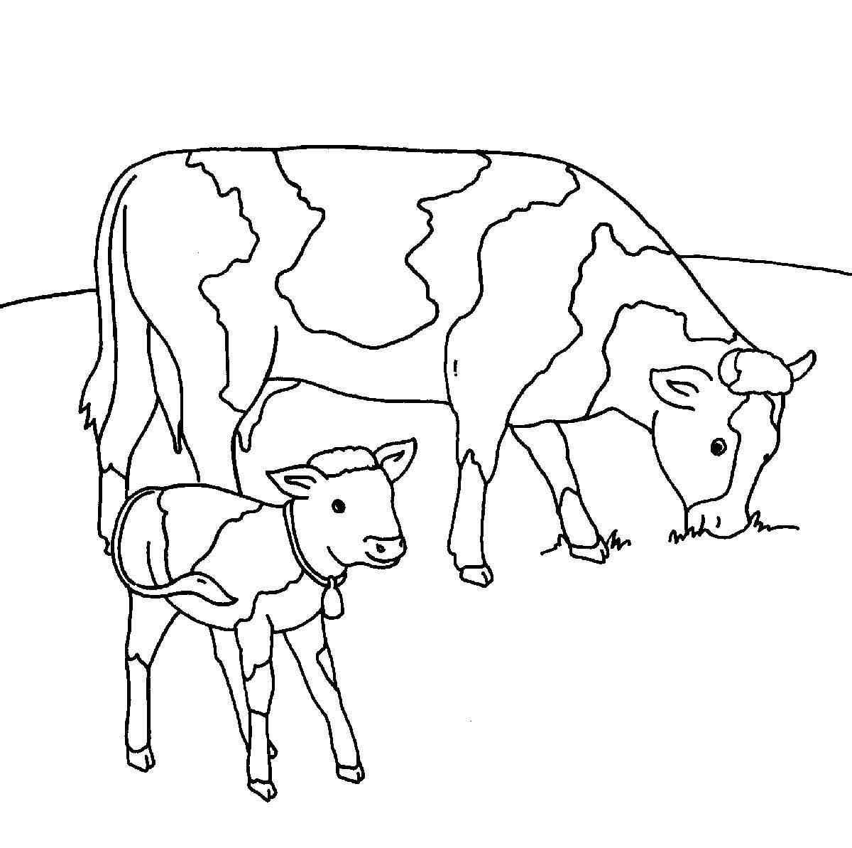 Ausmalbild Bauernhof: Kühe Auf Der Weide Kostenlos Ausdrucken bestimmt für Kuh Malvorlage