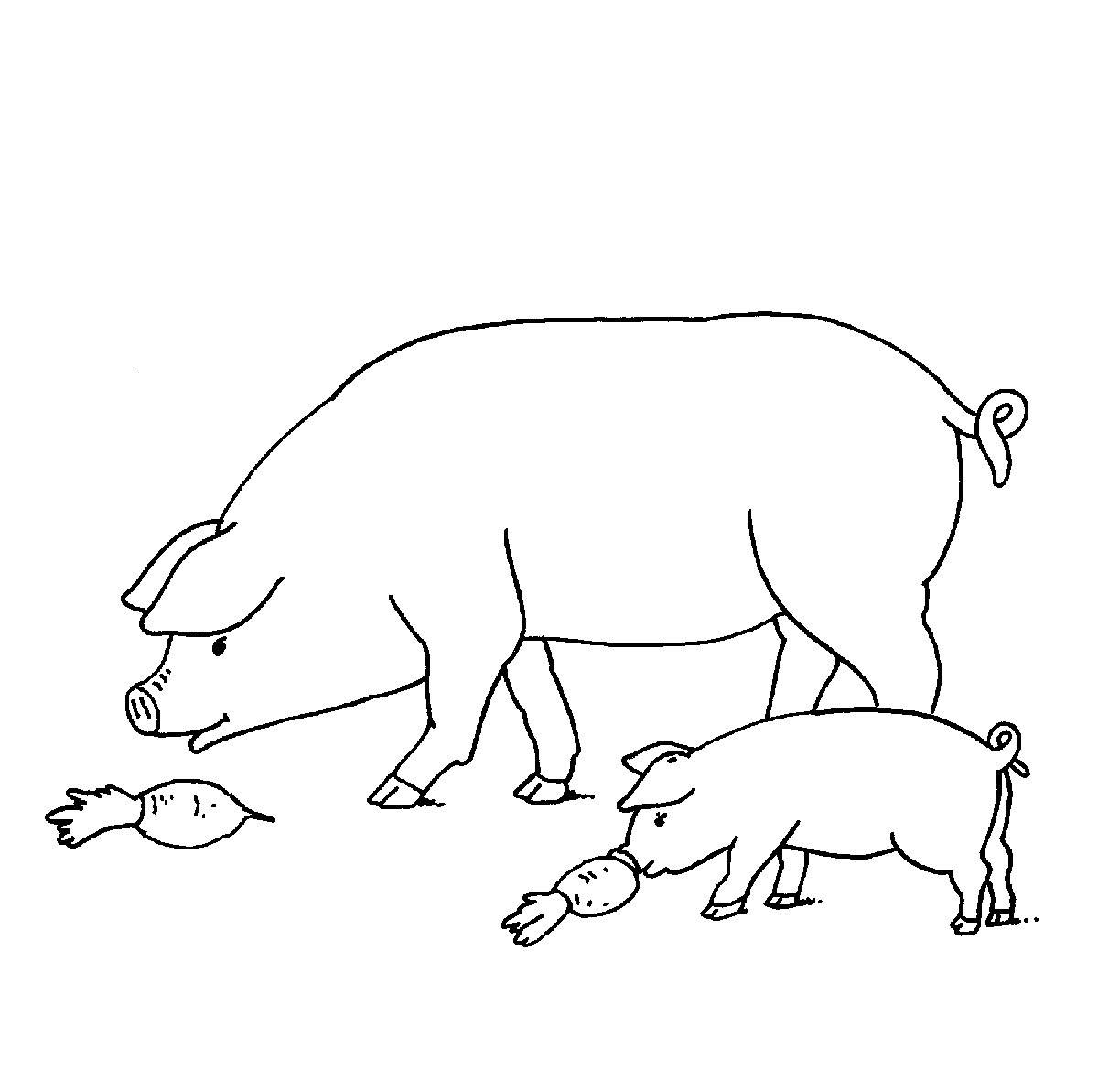 Ausmalbild Bauernhof: Schweine Auf Dem Bauernhof Kostenlos bei Ausmalbilder Bauernhof Kostenlos