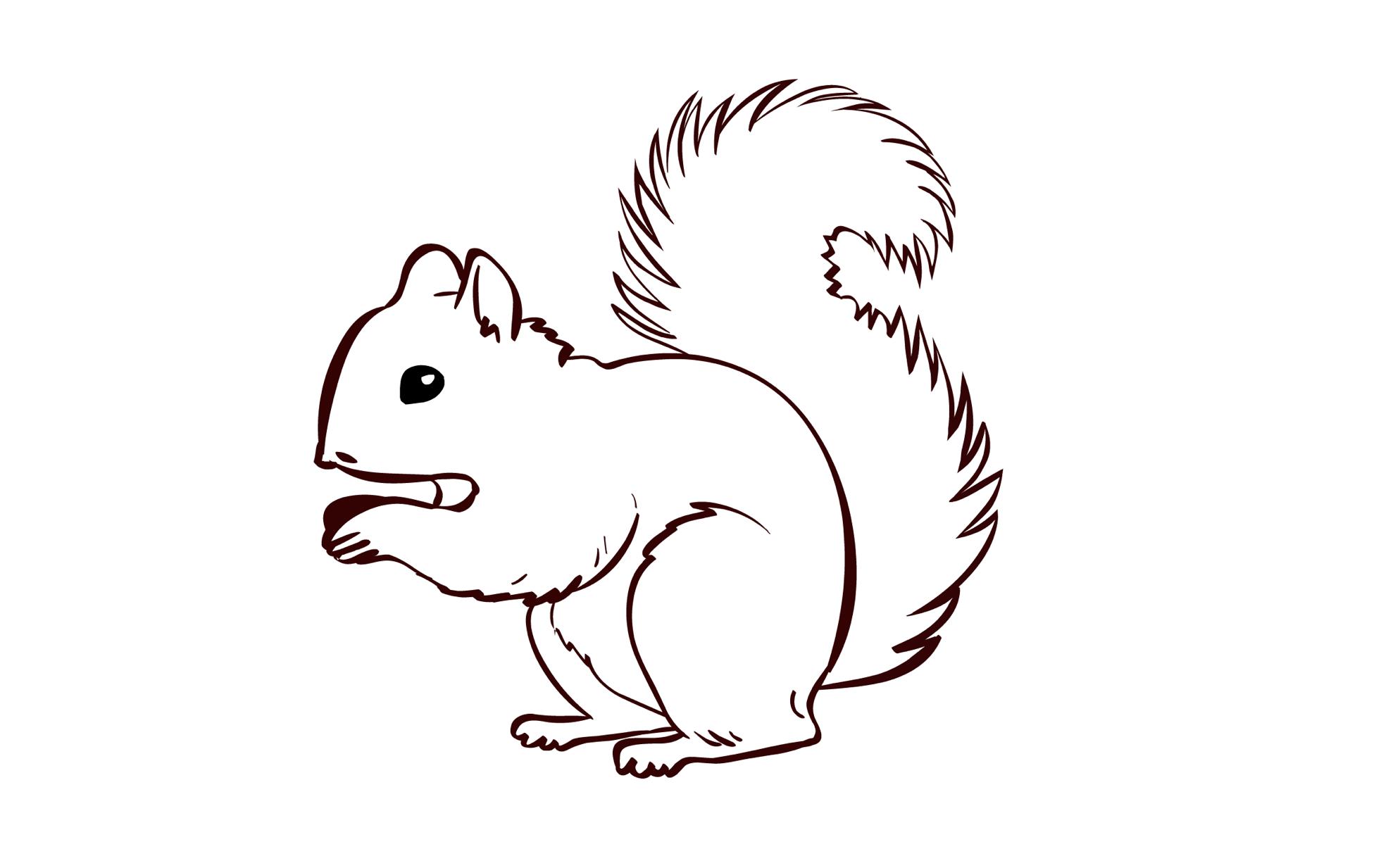 Ausmalbild - Eichhörnchen | Olis Bahnwelt bestimmt für Eichhörnchen Zum Ausmalen