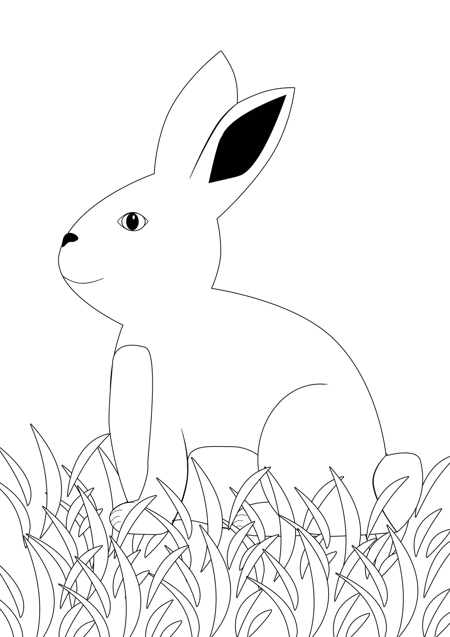 Ausmalbild Hase Feldhase - Kostenlose Malvorlagen verwandt mit Hasen Bilder Zum Ausdrucken Kostenlos
