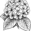 Ausmalbild-Malvorlage--Blumenstrauss--571 ganzes Blumenstrauß Ausmalbilder