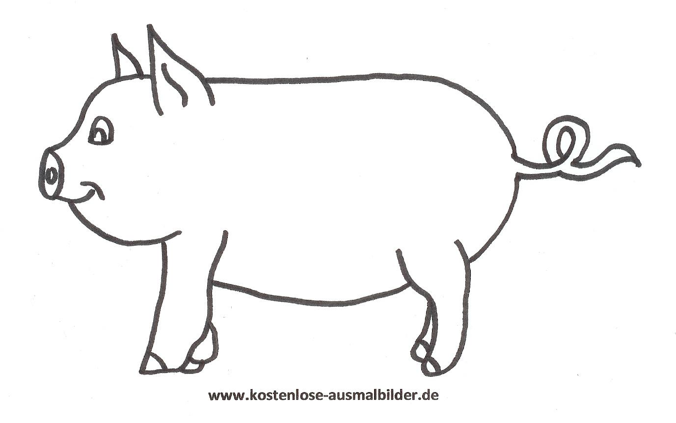 Ausmalbild Malvorlage Schwein Zum Ausdrucken innen Ausmalbild Schwein