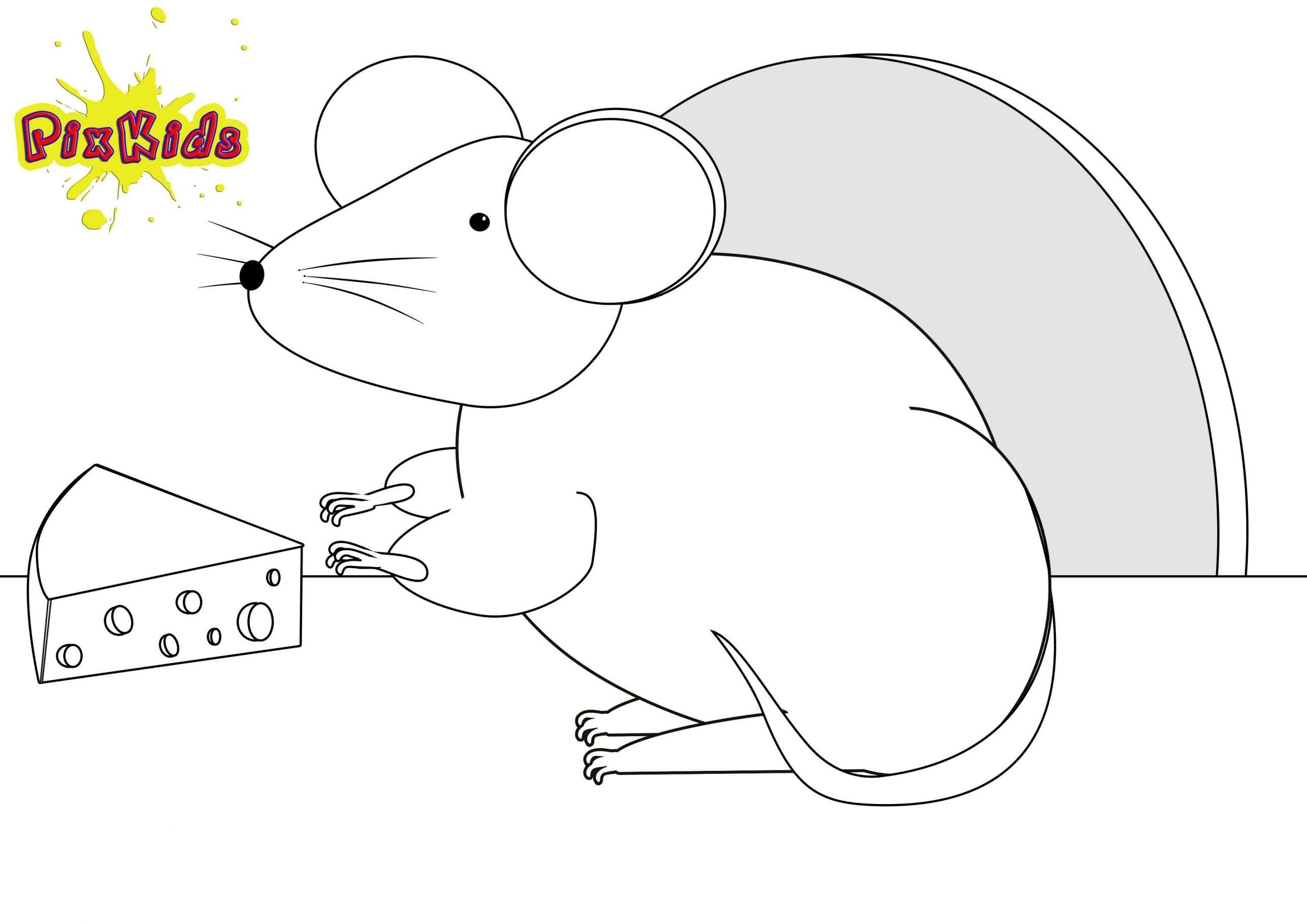 Ausmalbild Maus - Kostenlose Malvorlagen ganzes Ausmalbilder Die Maus