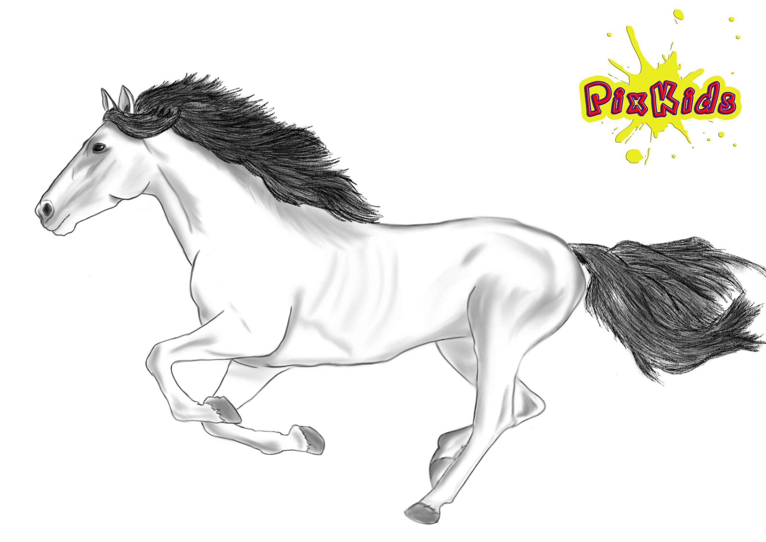 Ausmalbild Pferd - Kostenlose Malvorlagen für Pferde Bilder Zum Ausmalen Und Ausdrucken Kostenlos