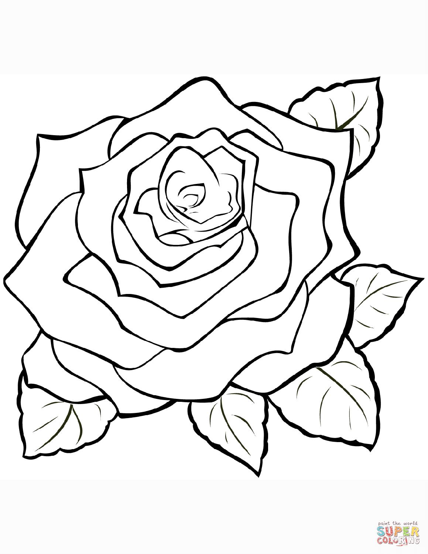 Ausmalbild: Rosen | Ausmalbilder Kostenlos Zum Ausdrucken mit Rose Malvorlage
