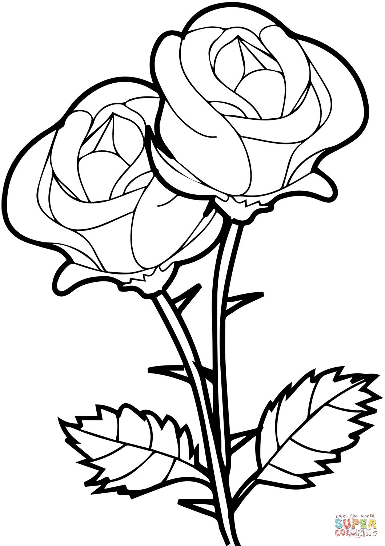 Ausmalbild: Rosen | Ausmalbilder Kostenlos Zum Ausdrucken verwandt mit Rose Malvorlage