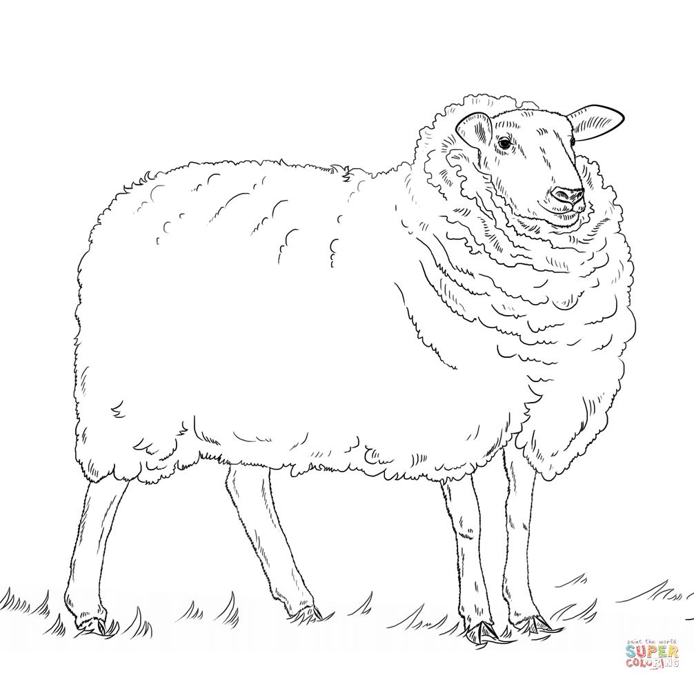 Shaun Das Schaf Ausmalbilder Zum Ausdrucken - kinderbilder ...