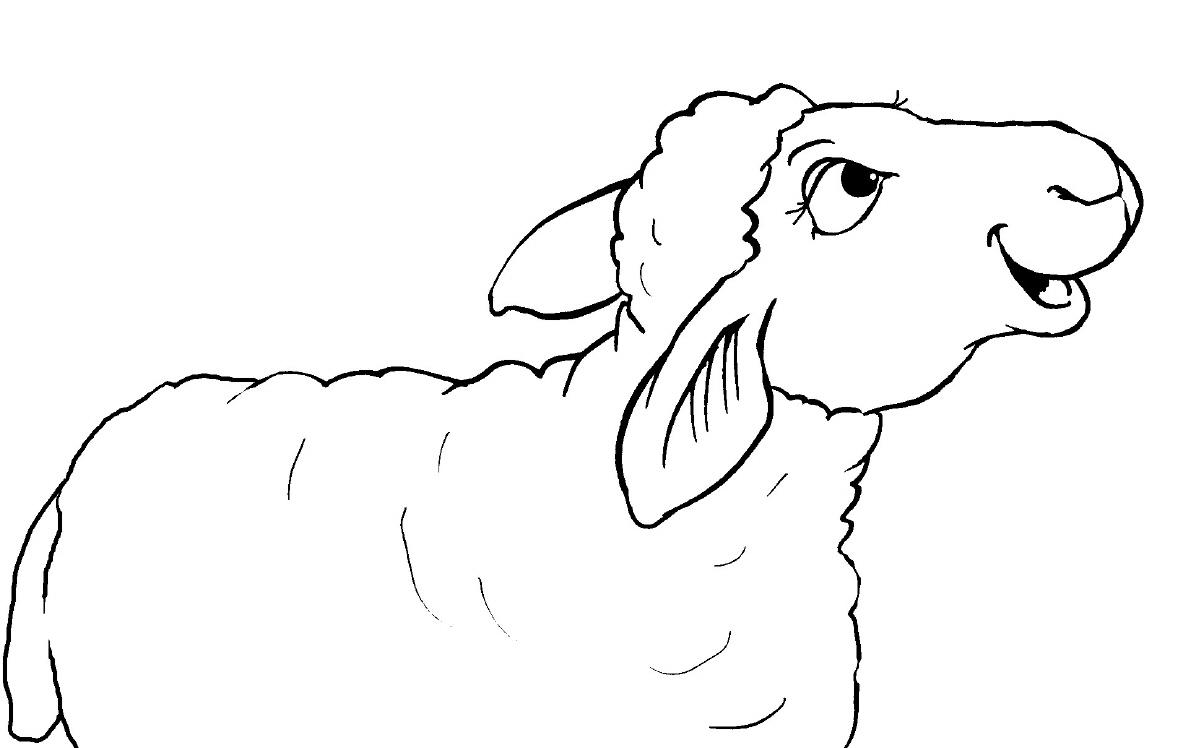 Ausmalbild Schaf Kostenlose Malvorlagen Schafe - Malvorlagen in Schaf Malvorlage