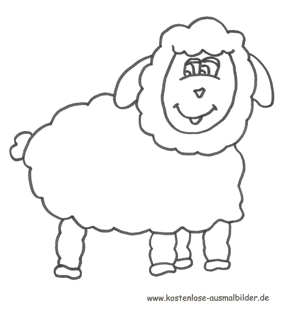 Ausmalbild Schaf Zum Ausdrucken über Schaf Malvorlage