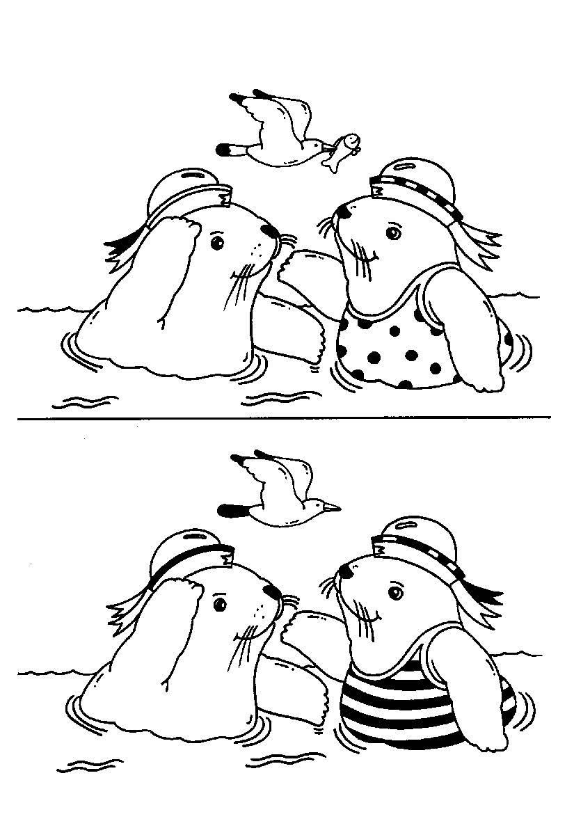 Ausmalbild Suchbilder Für Kinder: Lustige Seehunde Kostenlos mit Suchbilder Ausdrucken