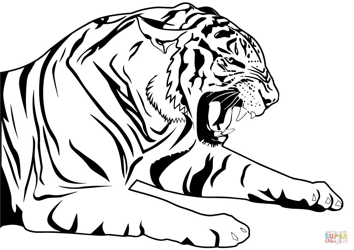 Ausmalbild: Tiger | Ausmalbilder Kostenlos Zum Ausdrucken ganzes Tiger Zum Ausmalen