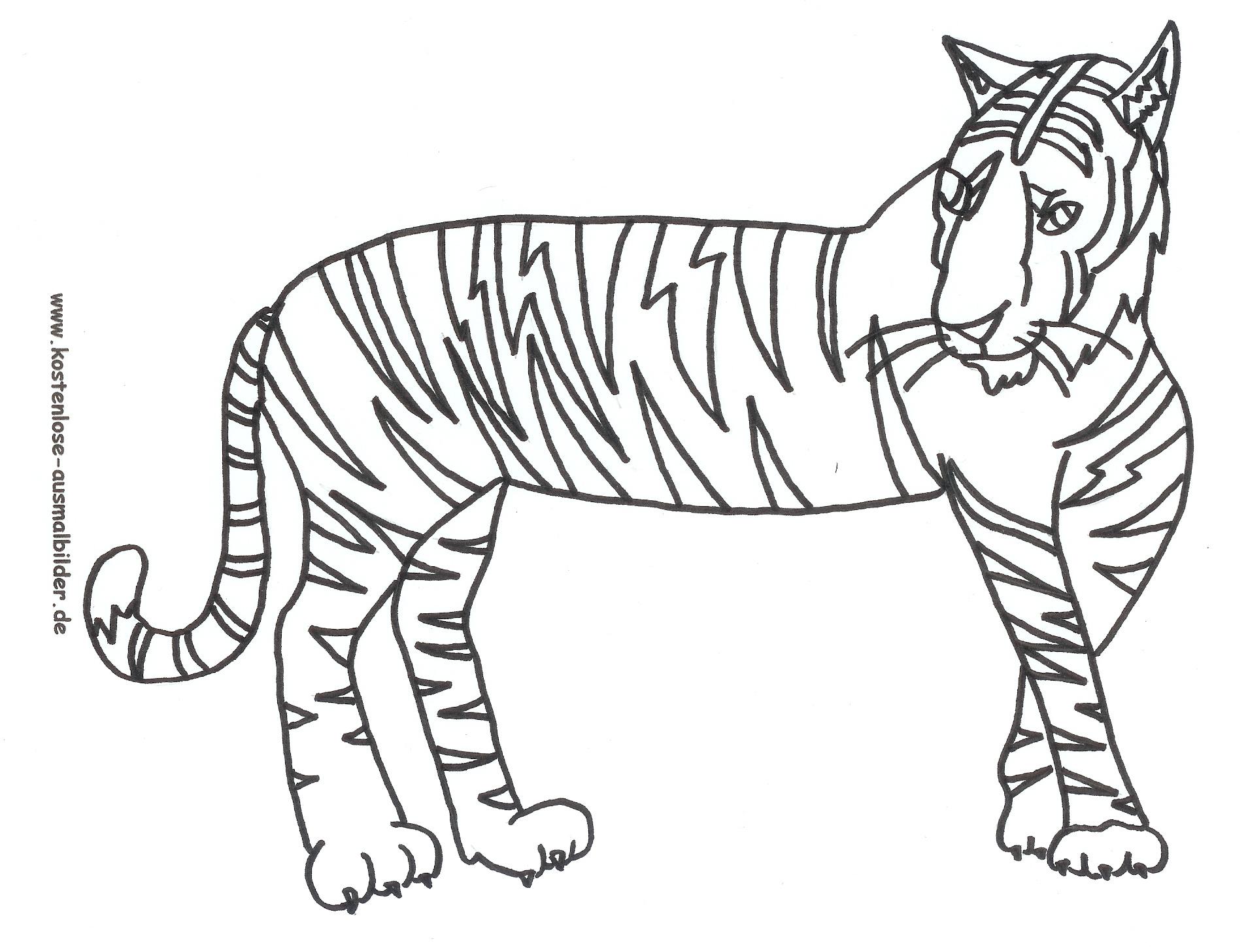 Ausmalbild Tiger Zum Ausdrucken für Tiger Zum Ausmalen