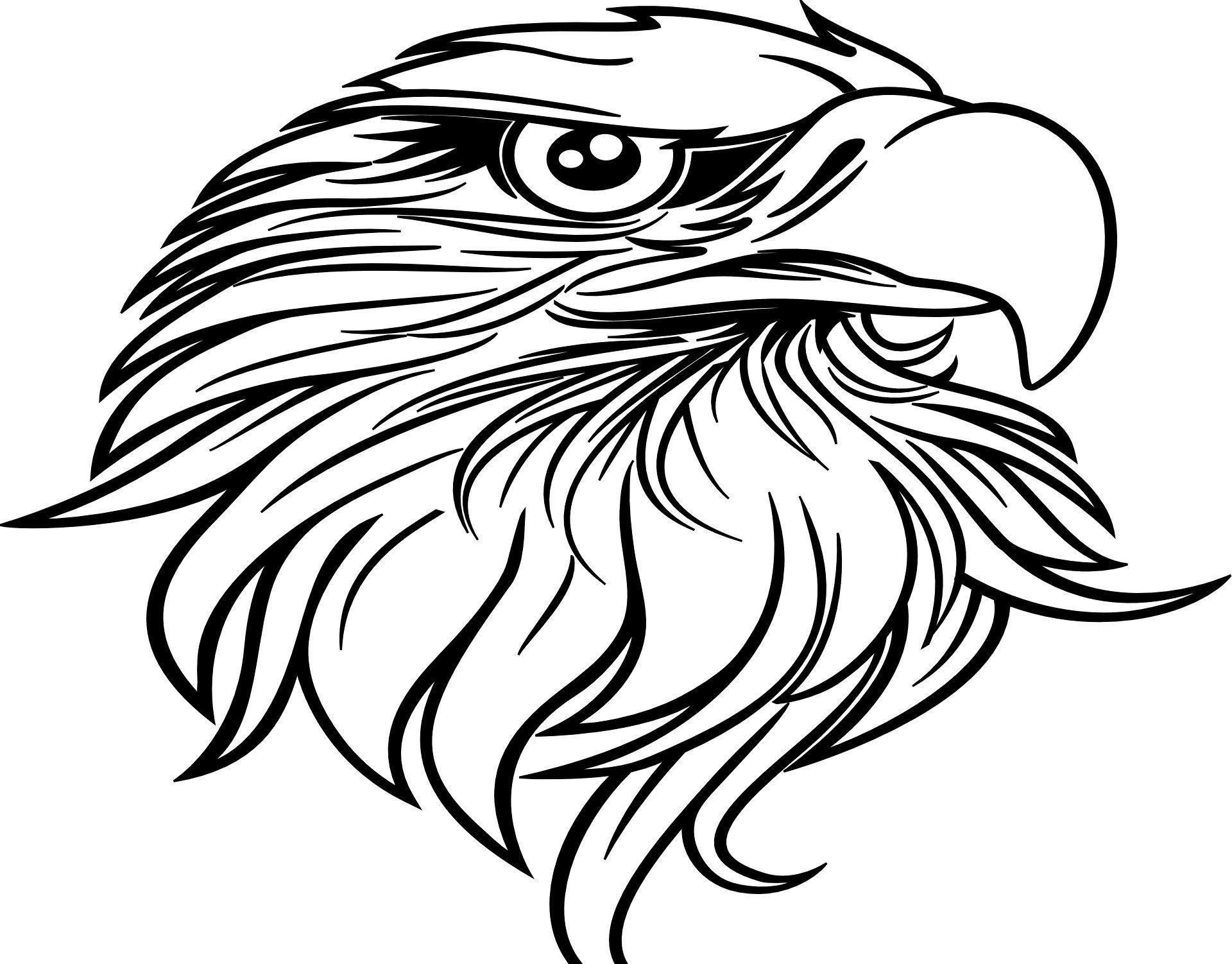 Ausmalbilder Adler | Erstaunliche Zeichnungen mit Ausmalbilder Adler