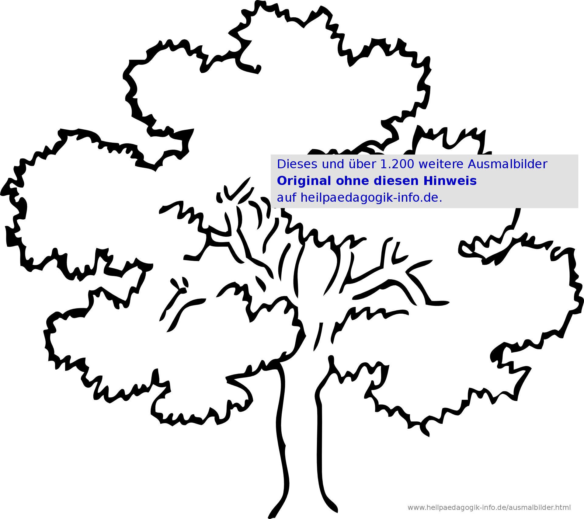 Ausmalbilder Blumen, Bäume, Blätter bestimmt für Malvorlagen Bäume Zum Ausdrucken