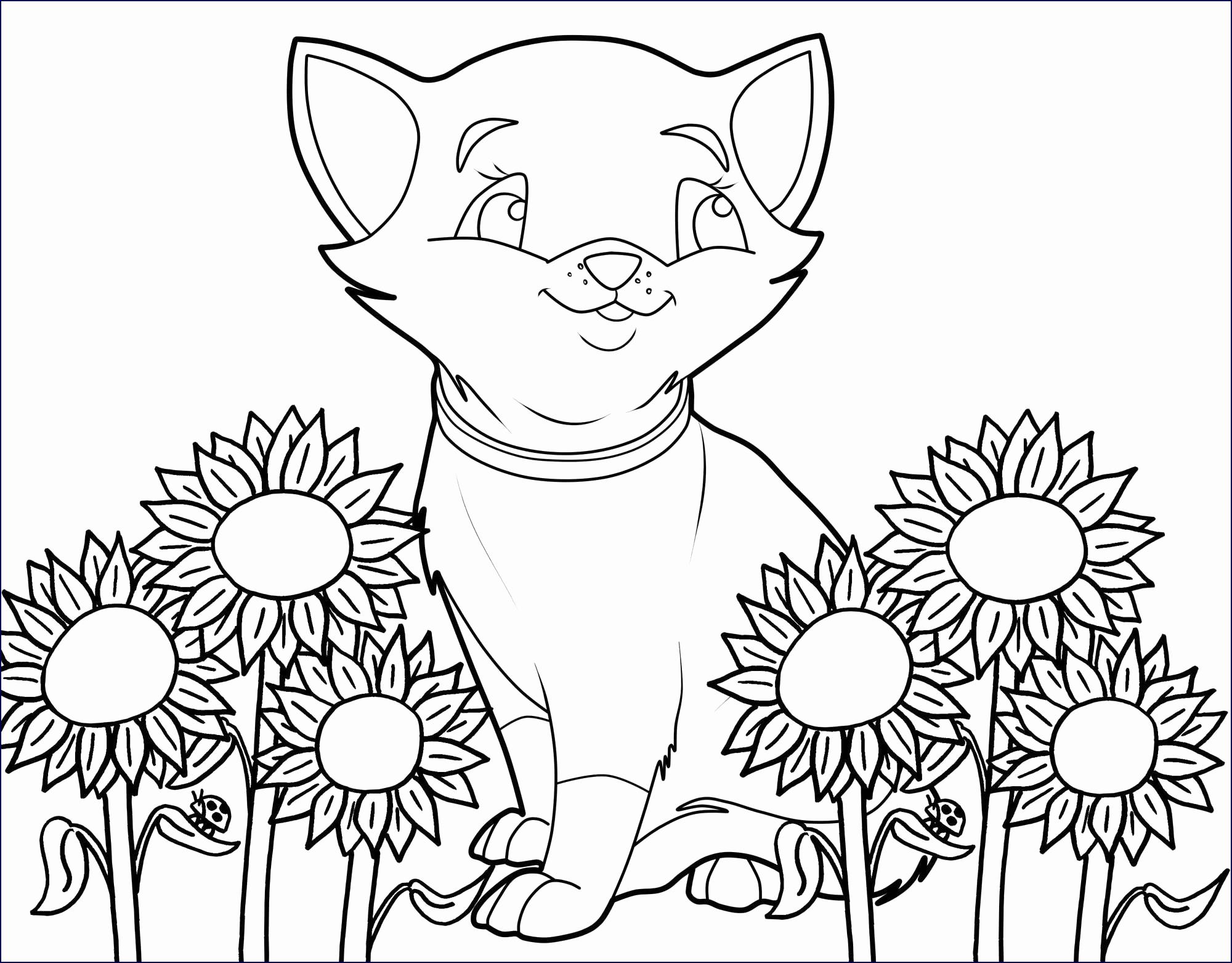 Ausmalbilder Blumen Kostenlos Einzigartig Blumenbilder Zum bestimmt für Blumenbilder Zum Ausdrucken Kostenlos