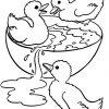 Ausmalbilder Ente, Bild Ente 14 bestimmt für Ausmalbild Ente