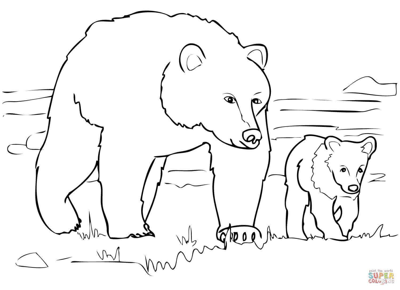 Ausmalbilder Grizzlybären - Malvorlagen Kostenlos Zum Ausdrucken über Bär Zum Ausmalen