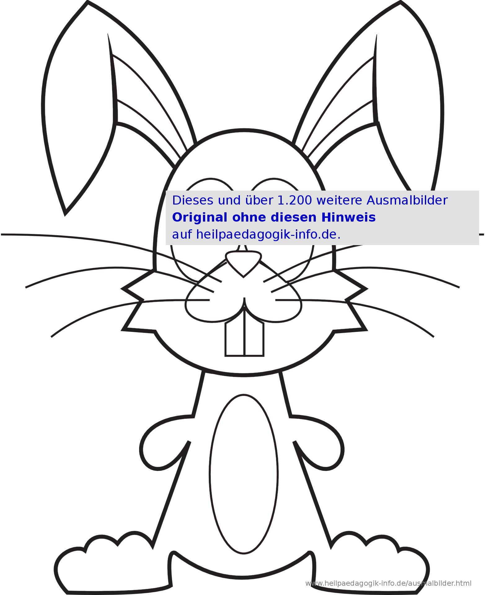 Ausmalbilder Hasen bestimmt für Hasen Malvorlage