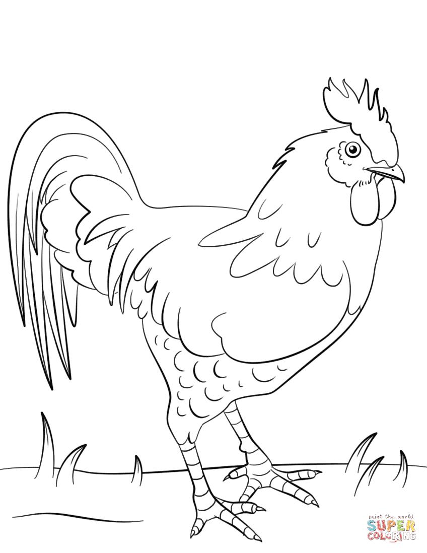 Ausmalbilder Hühner - Malvorlagen Kostenlos Zum Ausdrucken verwandt mit Hühner Ausmalbilder