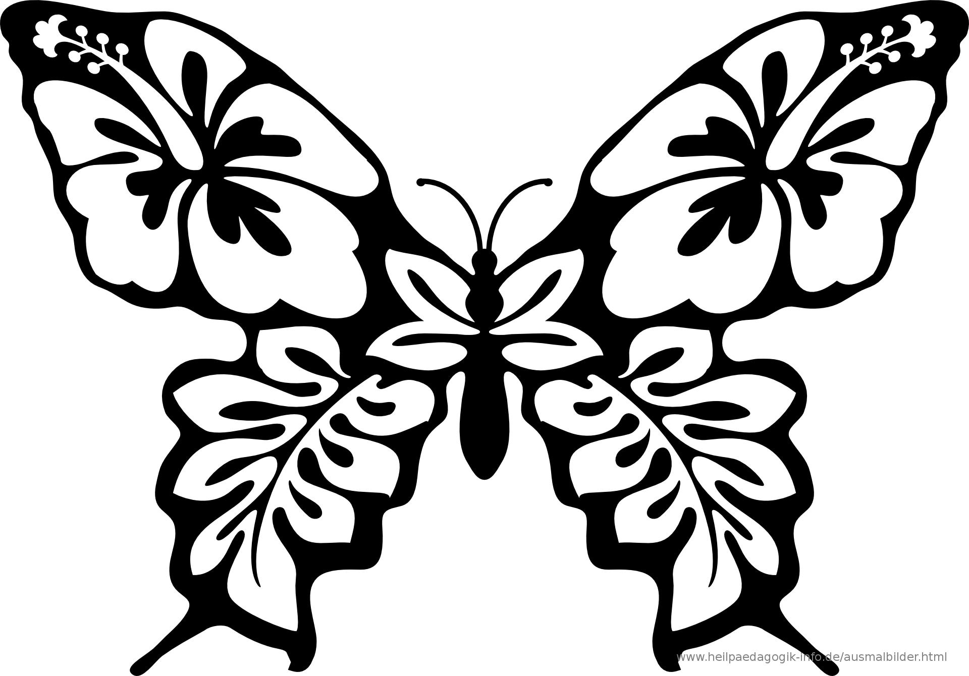 Ausmalbilder Käfer, Schmetterlinge, Insekten ganzes Malvorlage Schmetterling