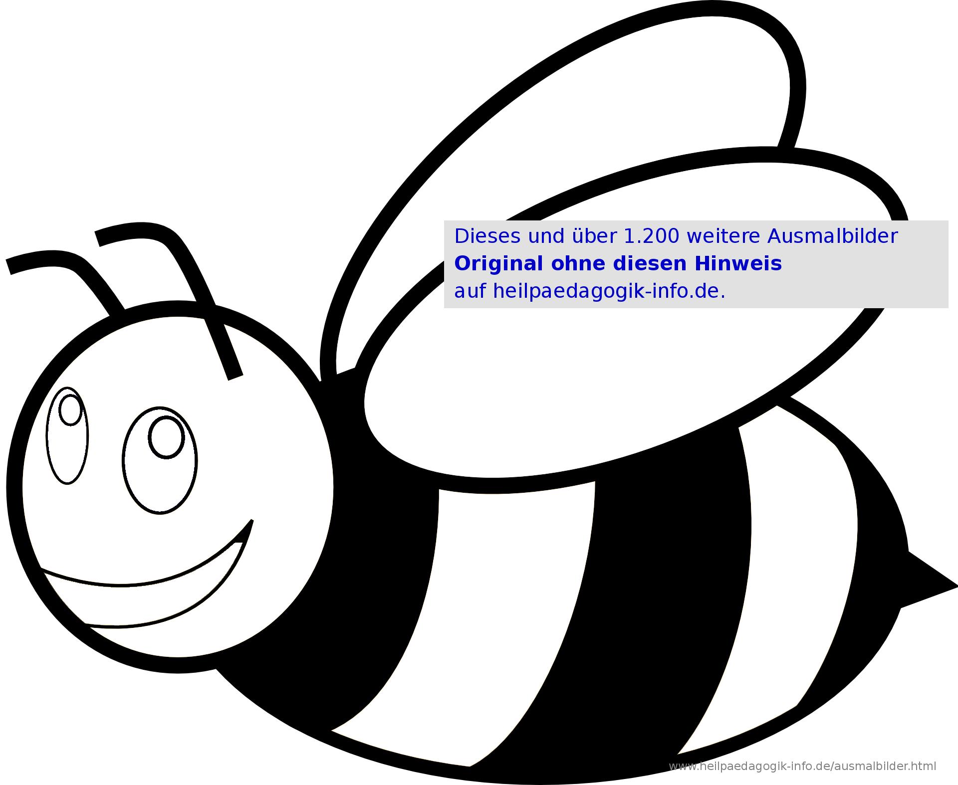 ausmalbilder käfer, schmetterlinge, insekten innen biene
