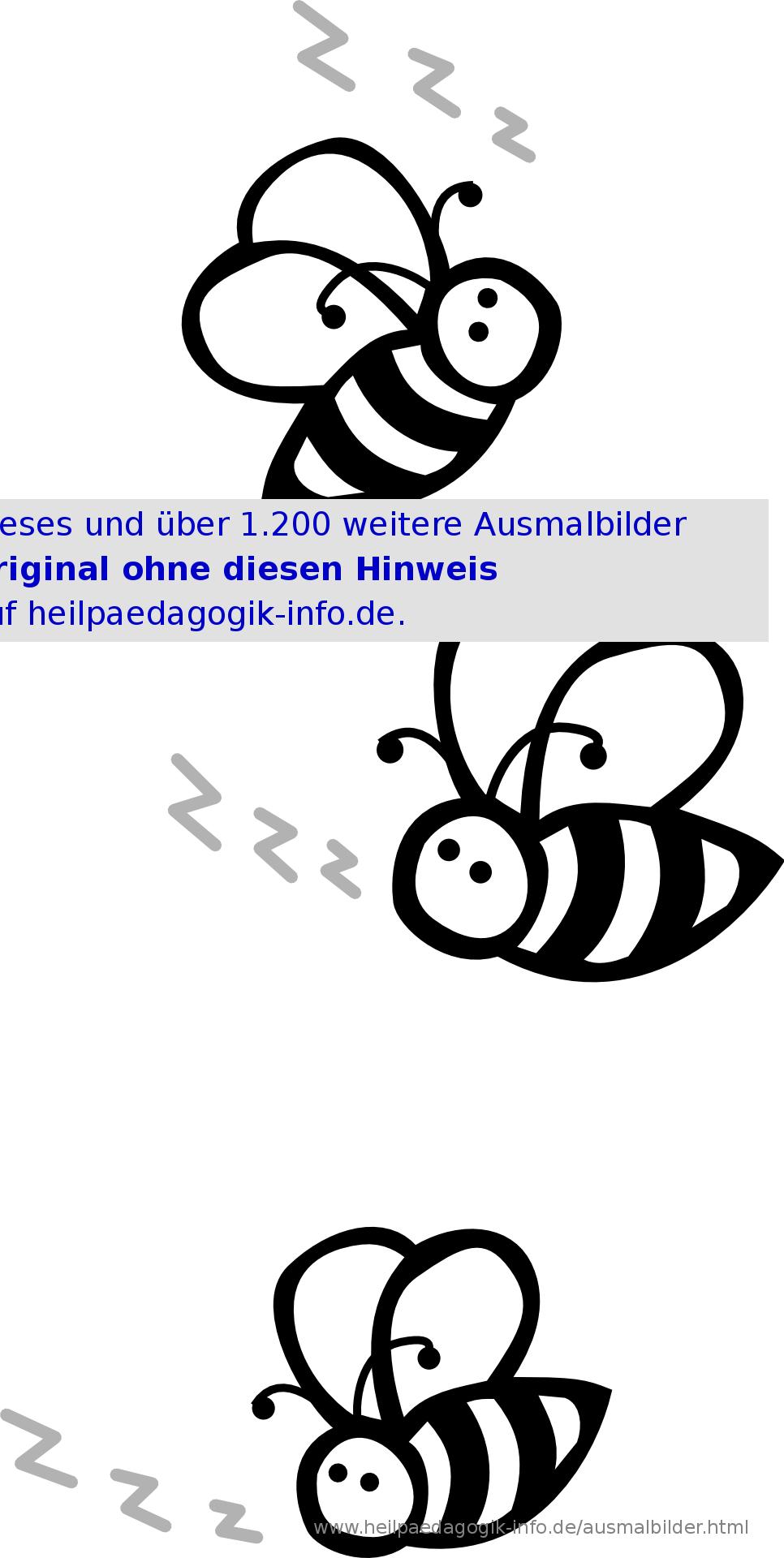 Ausmalbilder Käfer, Schmetterlinge, Insekten mit Biene Zum Ausmalen