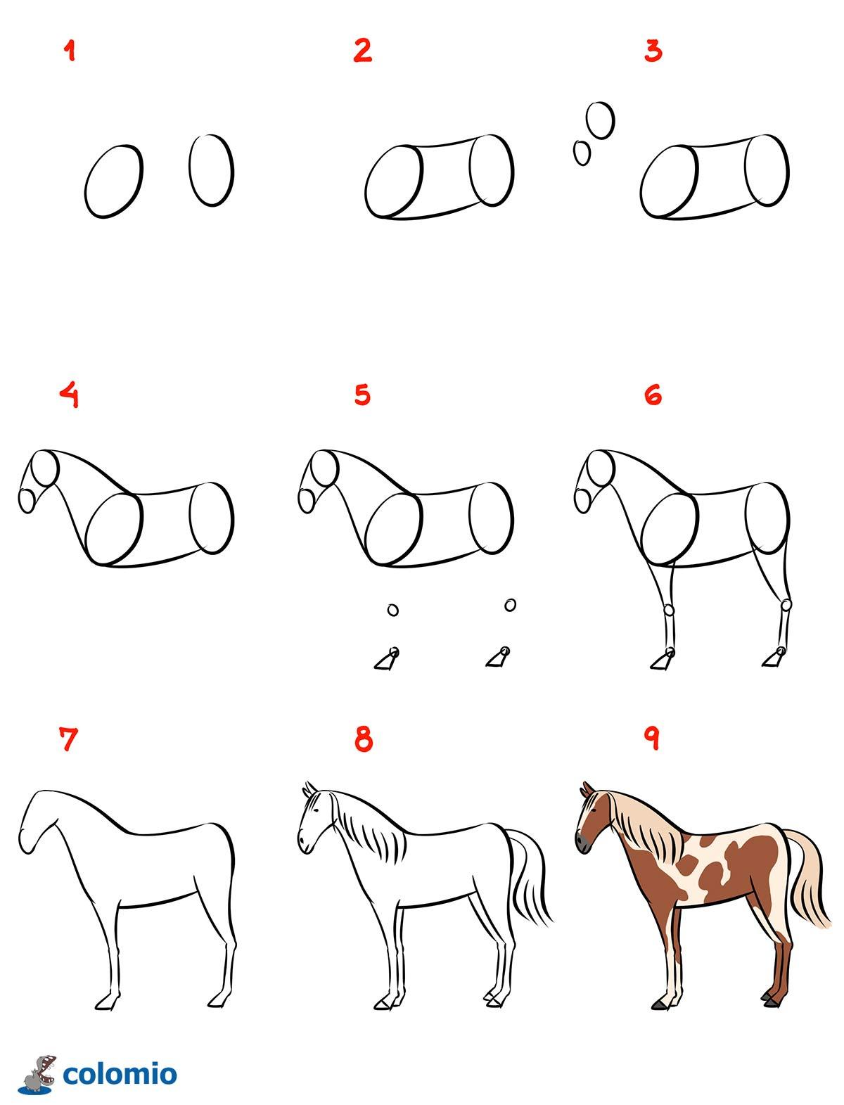 pferdekopf zeichnen schritt für schritt  kinderbilder