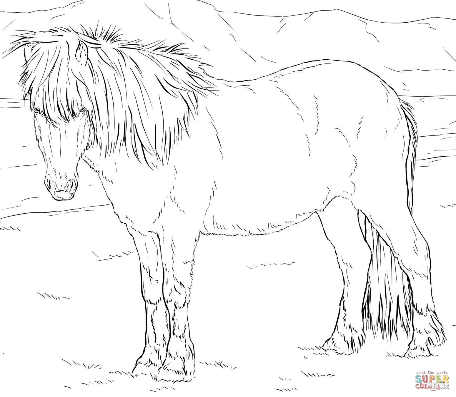 Ausmalbilder Pferde - Malvorlagen Kostenlos Zum Ausdrucken bei Pferdebilder Zum Ausmalen Und Ausdrucken