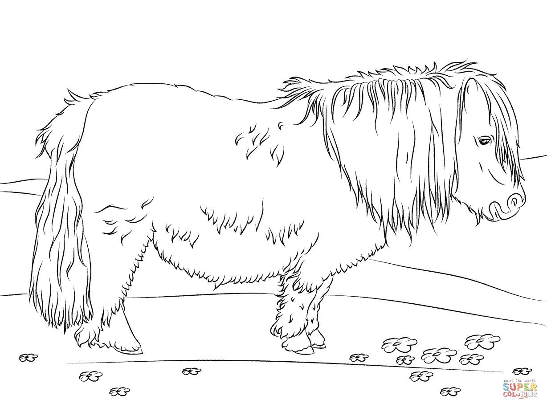 Ausmalbilder Pferde - Malvorlagen Kostenlos Zum Ausdrucken innen Ausmalbilder Pferde Und Ponys