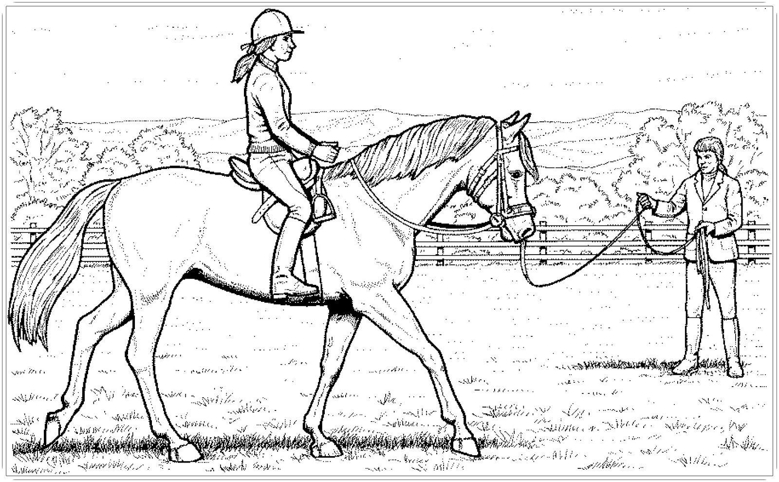 Ausmalbilder Pferde Mit Reiterin | Ausmalbilder Pferde in Pferde Bilder Zum Ausmalen Und Ausdrucken