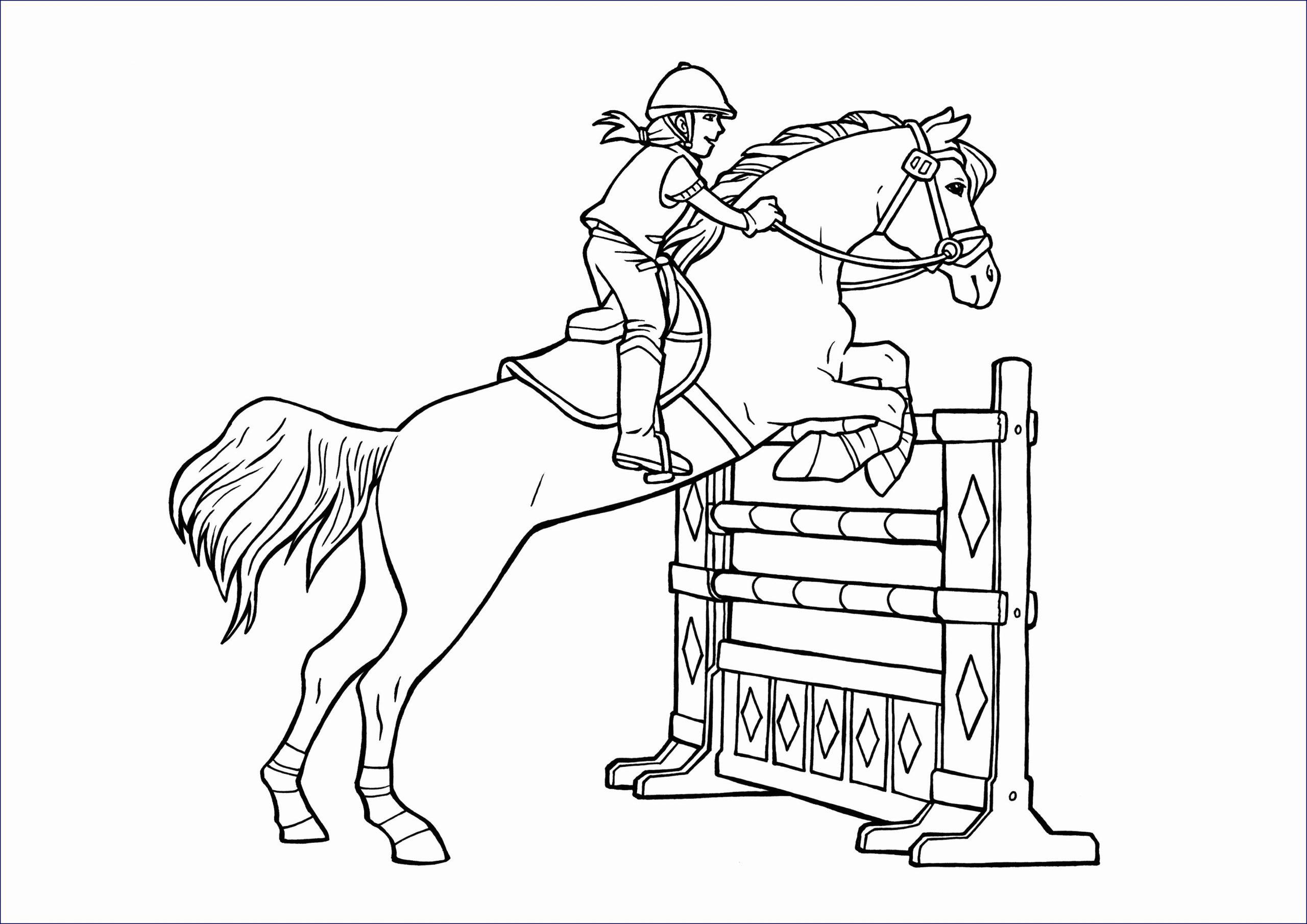 Ausmalbilder Pferde Mit Reiterin   Ausmalbilder Pferde mit Ausmalbilder Pferde Und Ponys