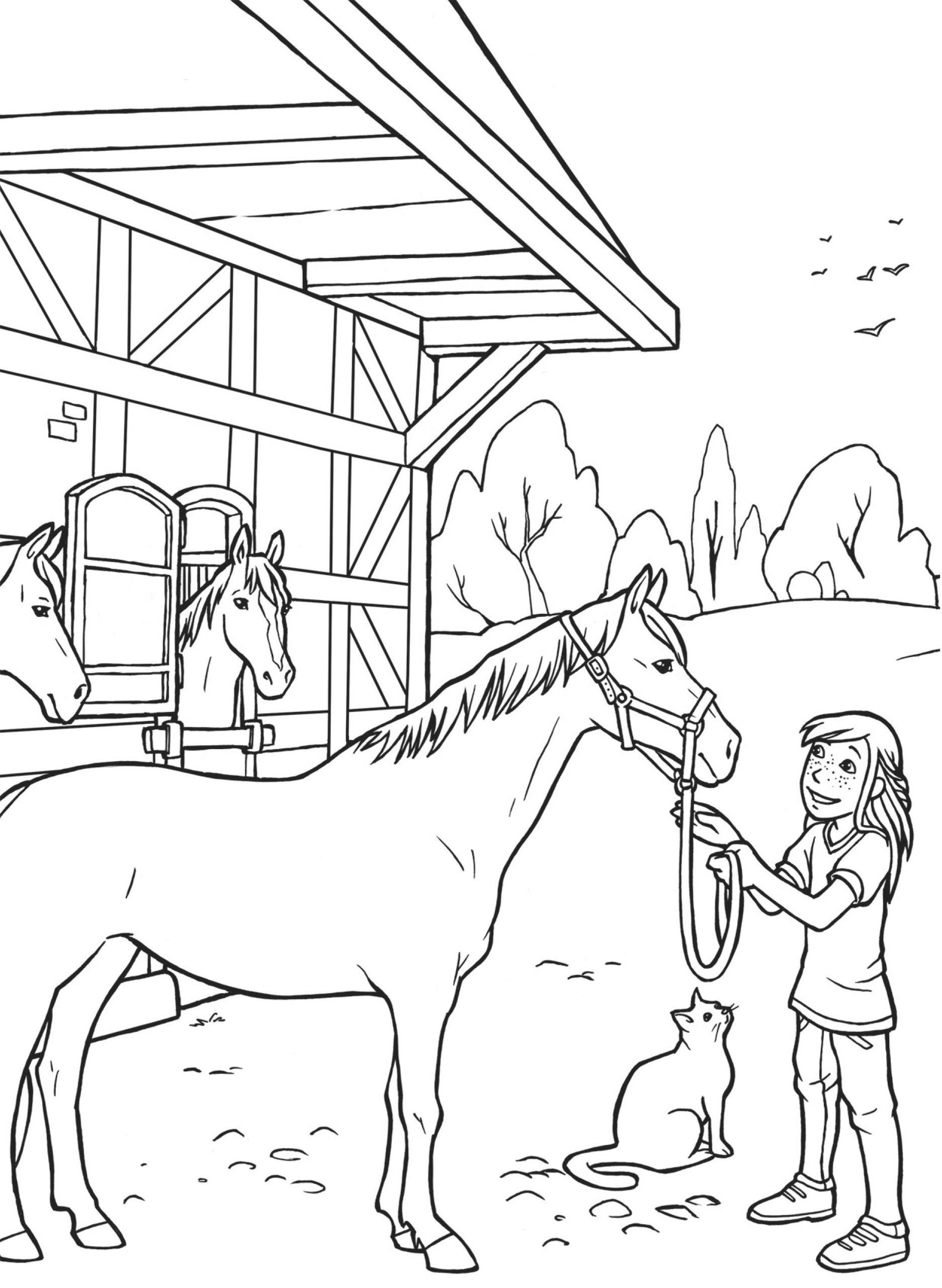 Ausmalbilder Pferde | Mytoys-Blog über Pferdebilder Zum Ausmalen Und Ausdrucken
