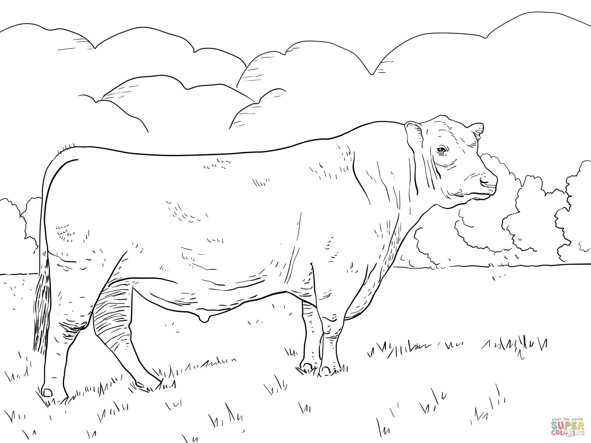 Ausmalbilder Rinder - Malvorlagen Kostenlos Zum Ausdrucken verwandt mit Malvorlagen Kühe