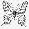 Ausmalbilder Schmetterling Zum Ausdrucken - Mandala Coloring in Schmetterling Zum Ausdrucken