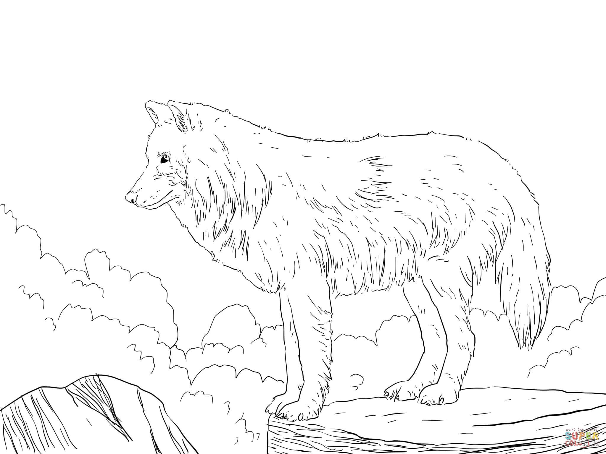 wolf ausmalbilder zum ausdrucken  ausmalbilder wolf 2