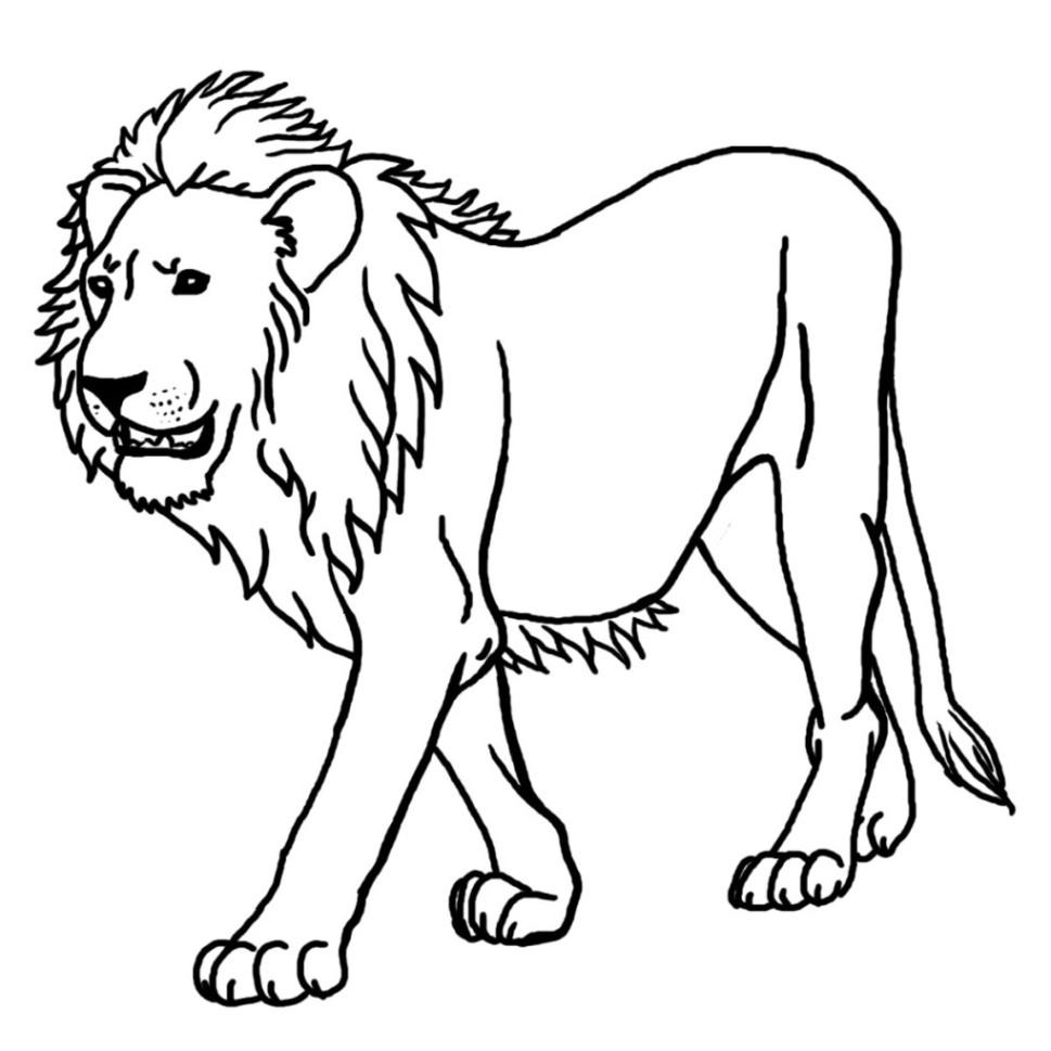 Ausmalbilder Zum Ausdrucken Gratis Malvorlagen Löwe 2 bestimmt für Ausmalbild Löwe
