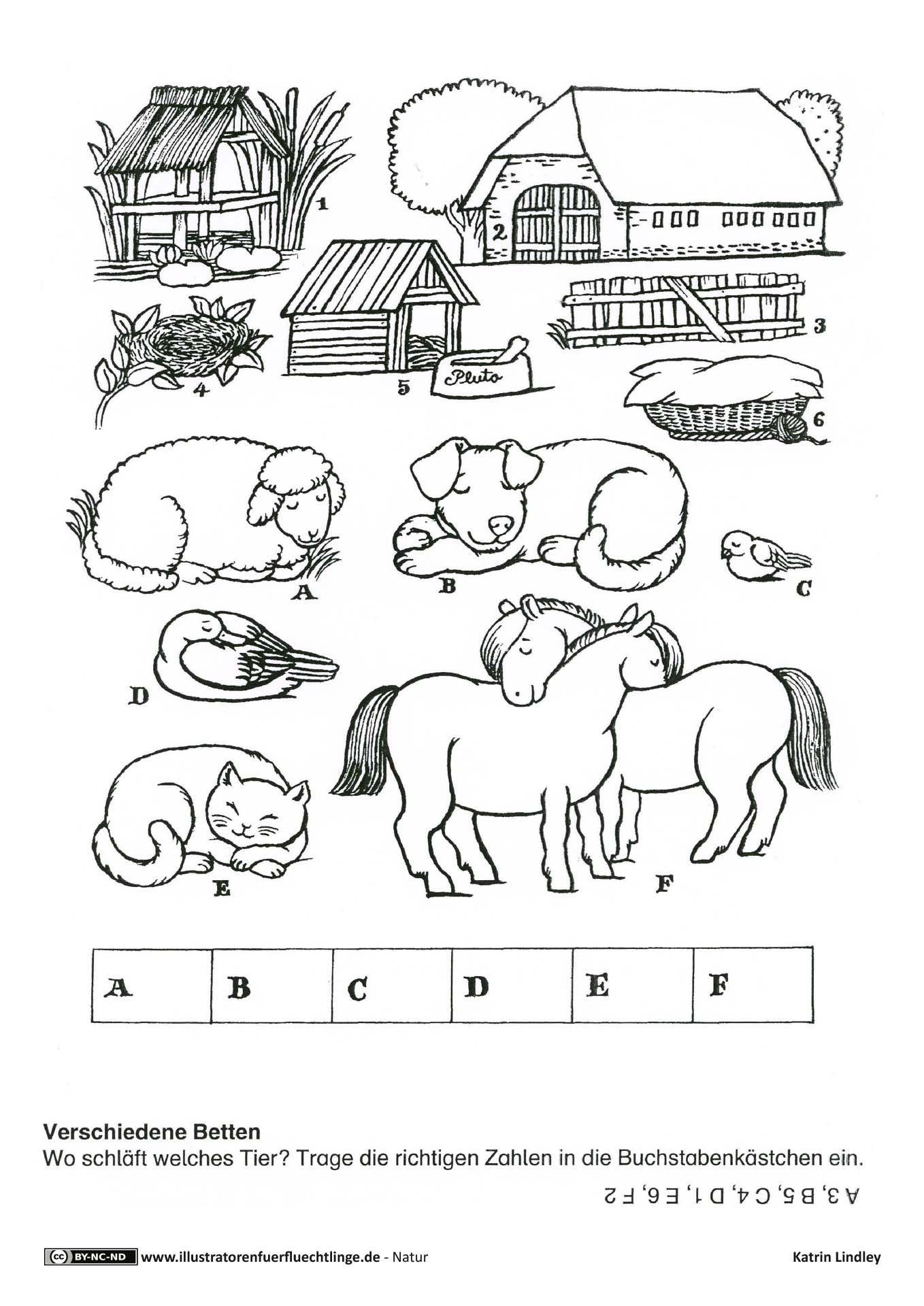rätsel für kindergartenkinder tiere  kinderbilder